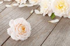 Frische rosafarbene Blumen auf hölzernem Hintergrund Stockbild