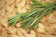 Frische Rosemary-Blätter stockfotografie