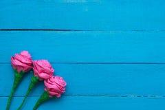 Frische Rosen blüht im Strahl des Lichtes auf Türkis gemaltem hölzernem Hintergrund Selektiver Fokus Platz für Text Stockfoto