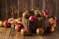 Frische rote Äpfel in einem Korb stockbilder