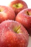 Frische rote Äpfel mit Feuchtigkeit Lizenzfreies Stockfoto