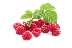 Frische rote Beere mit Blättern auf weißem Hintergrund Lizenzfreies Stockfoto