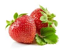 Frische rote Erdbeeren mit grünen Blättern Lizenzfreies Stockbild
