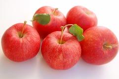 Frische rote Galaäpfel Lizenzfreie Stockbilder