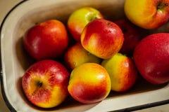 Frische rote gelbe Äpfel mit Wassertropfen der Weinleseemailschüssel im Sonnenlicht, Abschluss oben lizenzfreie stockbilder