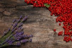 Frische rote Johannisbeerbeeren und -lavendel Stockfoto