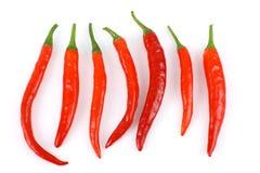 Frische rote Paprikas lizenzfreies stockbild