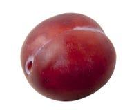 Frische rote Pflaumen eine auf einem weißen Hintergrund Lizenzfreies Stockfoto
