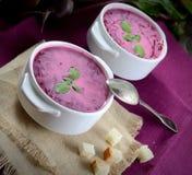 Frische rote Rübe der kalten Suppe mit Sahne, Weinleselöffel, Serviette, Cracker lizenzfreie stockbilder