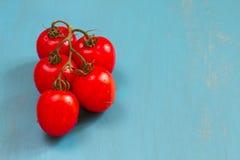 Frische rote Rebtomate auf blauem Hintergrund Stockbild