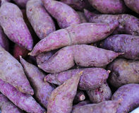 Frische rote Süßkartoffeln Lizenzfreies Stockbild