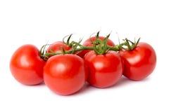 Frische rote Tomaten Stockbilder