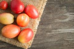 Frische rote Tomaten auf Sackleinen Lizenzfreie Stockfotos