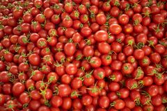 Frische rote Tomaten an einem Landwirtmarkt Gesunde Nahrung Organischer Hintergrund stockbild