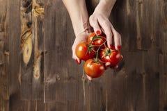 Frische rote Tomaten in Frau ` s Händen mit den schönen Fingern, hölzerner Hintergrund, vegetarisches Konzept der landwirtschaftl Lizenzfreies Stockfoto