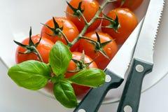 Frische rote Tomaten mit Basilikumblatt und -messern Lizenzfreie Stockfotografie