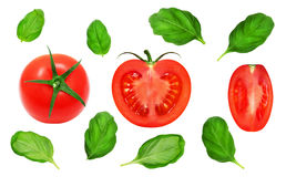 Frische rote Tomaten und Basilikumblätter Stockbild