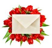 Frische rote Tulpen Abbildung für Ihre Auslegung Gerade ein geregnet Stockfotografie