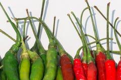 Frische rote und grüne Paprikas auf weißem Hintergrund Lizenzfreies Stockbild