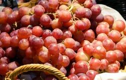 Frische rote Weinreben auf Markt lizenzfreies stockbild