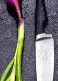 Frische rote Zwiebel und Messer Stockfotografie