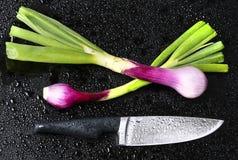 Frische rote Zwiebel und Messer Lizenzfreies Stockbild