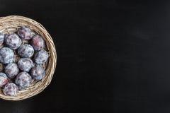 Frische süße Pflaume im runden rustikalen Weidenkorb auf schwarzem chalkboa Lizenzfreies Stockfoto