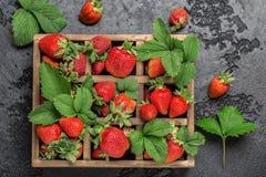 Frische saftige Erdbeeren mit Blättern Viele hellen, sind frische Beeren einer Erdbeere Gesundes Nahrungsmittelkonzept Frische or Stockbild