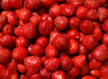 Frische saftige Erdbeeren sessile Stockbild