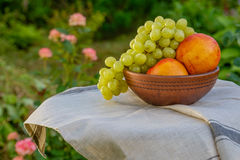 Frische saftige Frucht auf dem natürlichen Hintergrund Stockfoto