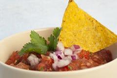 Frische Salsa stockfotos