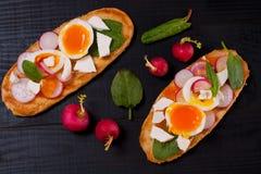 Frische Sandwiche mit Ei, Rettich, Feta und Spinat Lizenzfreie Stockfotos