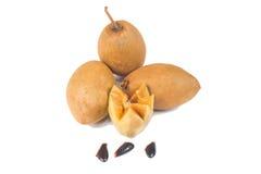 Frische Sapotillbaumfrüchte Lizenzfreies Stockbild