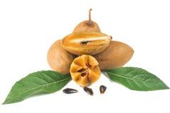 Frische Sapotillbaumfrüchte Stockfotos