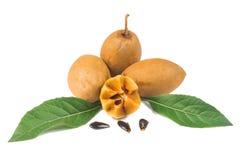 Frische Sapotillbaumfrüchte Lizenzfreie Stockfotos