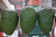 Frische sauer Sobbe, Annona muricata oder kolumbianisches guanabana in Landwirte Warenmarkt in Bogota stockfotos