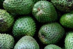 Frische sauer Sobbe, Annona muricata oder kolumbianisches guanabana in Landwirte Warenmarkt in Medellin, Kolumbien stockfoto
