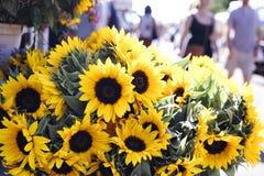 Frische schöne Sonnenblumen auf einem Stand lizenzfreie stockbilder