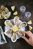 Frische Seeaustern auf einem großen Seesalz mit Zitrone Gesundes Lebensmittel, Delikatesse, Restaurantlebensmittel Lizenzfreies Stockbild