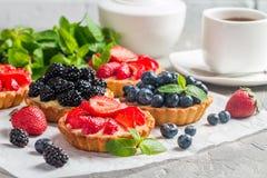 Frische selbst gemachte berrie Törtchen lizenzfreie stockfotografie