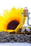 Frische Sonnenblumensamen Stockfotos