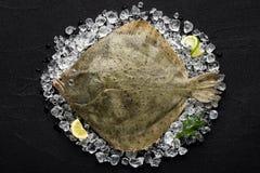 Frische Steinbuttfische auf Eis auf einer schwarzen Steintabelle Stockbilder