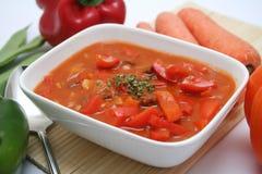 Frische Suppe Stockbilder