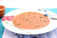 Frische Suppe der Tomaten Stockfotos