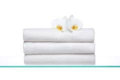 Frische Tücher mit weißen Orchideen Stockfotografie