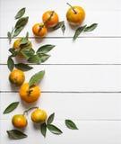Frische Tangerinen mit Blättern auf weißem hölzernem Hintergrundkopienraum für Draufsichtvertikale des Produktes oder des Textes Stockfotos
