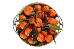 Frische Tangerinen mit Blättern auf weißem Hintergrund stockfotos