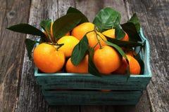 Frische Tangerinen mit Blättern im Korb Stockbilder