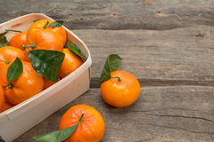 Frische Tangerinen mit Blatt Lizenzfreie Stockbilder