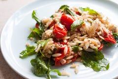 Frische Tomate des Gartens und orzo Salat Lizenzfreies Stockbild